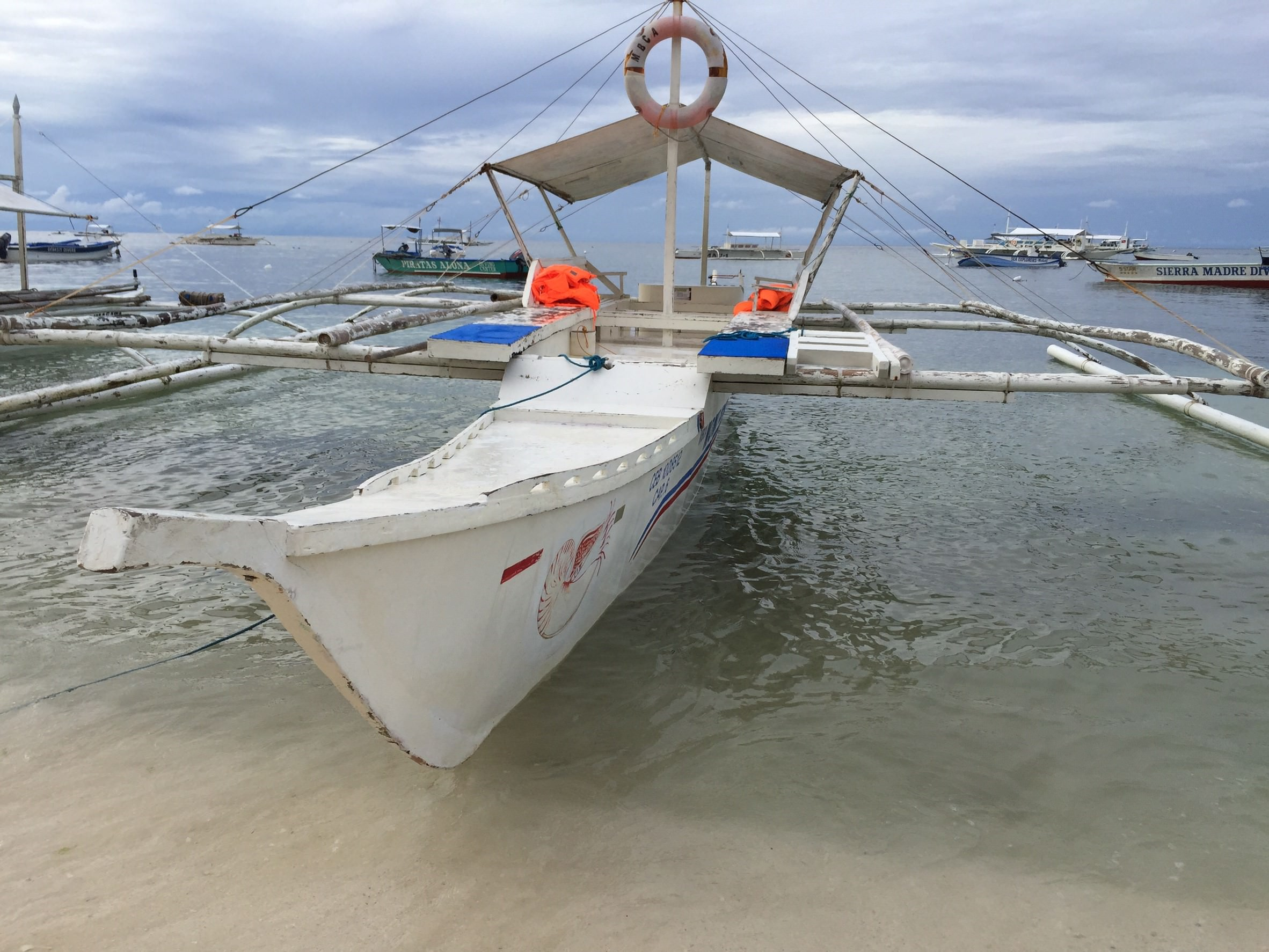 菲律賓·薄荷島~潛水_4361