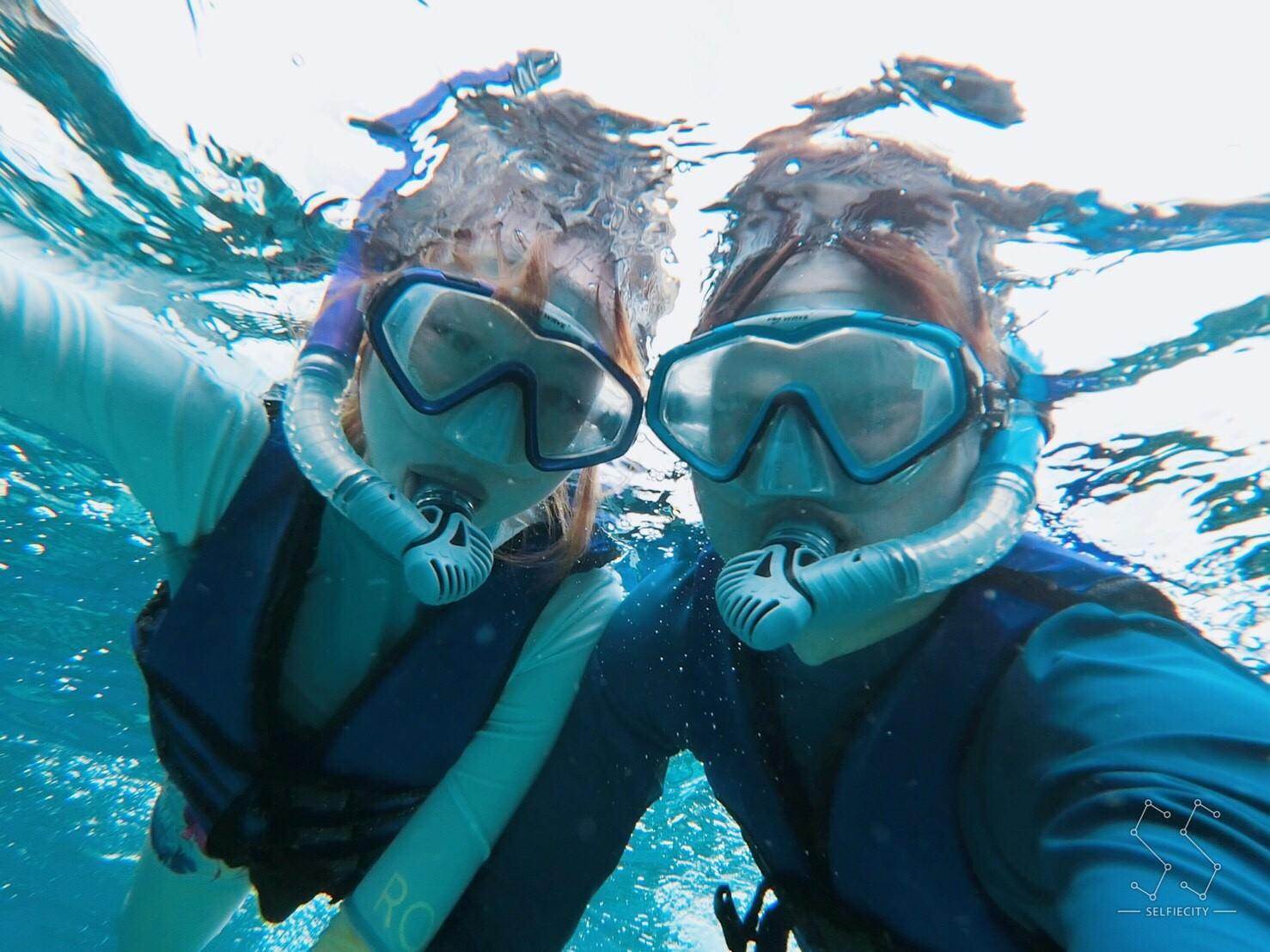 菲律賓·薄荷島~潛水_5430